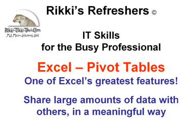 Excel Pivot Table Report Video Tutorial