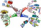 Mind Maps Stimulate Creative Thinking